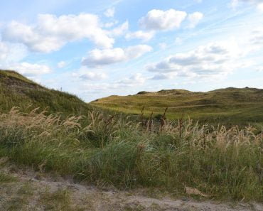 Texel in lonely planet
