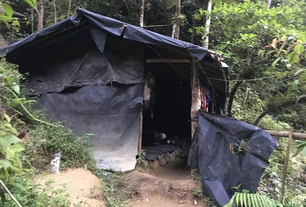 bukit lawang jungle trekking hut
