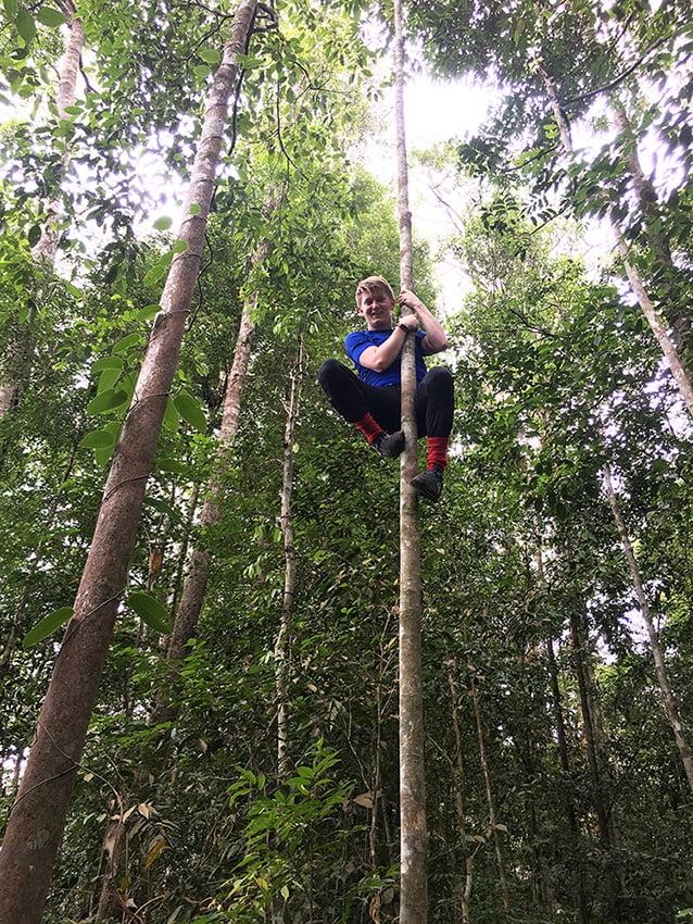 Jungle trekking Gunung Leuser National Park